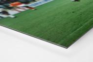 Klinsmann gegen Holland (2) als auf Alu-Dibond kaschierter Fotoabzug (Detail)