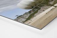 Palmen in Port Elizabeth als auf Alu-Dibond kaschierter Fotoabzug (Detail)