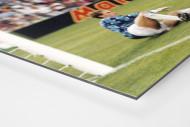 Klinsmann gegen Holland (1) als auf Alu-Dibond kaschierter Fotoabzug (Detail)