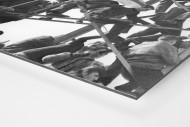 Kaiserslautern Fans als auf Alu-Dibond kaschierter Fotoabzug (Detail)