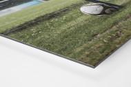 Ball neben Bank als auf Alu-Dibond kaschierter Fotoabzug (Detail)