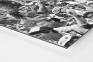 Bochum Fans 1988 als auf Alu-Dibond kaschierter Fotoabzug (Detail)