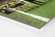 BVB im Old Trafford als auf Alu-Dibond kaschierter Fotoabzug (Detail)
