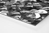 Zuschauer 1963 als auf Alu-Dibond kaschierter Fotoabzug (Detail)