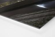 Niederrheinstadion bei Flutlicht (Farbe) als auf Alu-Dibond kaschierter Fotoabzug (Detail)