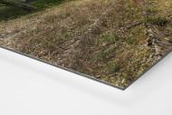 Verlassene Stadien - Solingen (2) als auf Alu-Dibond kaschierter Fotoabzug (Detail)