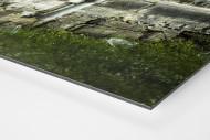 Stehplätze Bölle  als auf Alu-Dibond kaschierter Fotoabzug (Detail)