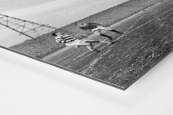Rangers vs. Celtic 1968 als auf Alu-Dibond kaschierter Fotoabzug (Detail)