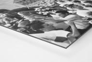 Pionier in Neubrandenburg als auf Alu-Dibond kaschierter Fotoabzug (Detail)