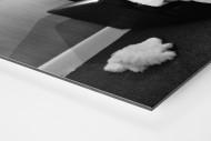 Melancholisches Maskottchen als auf Alu-Dibond kaschierter Fotoabzug (Detail)