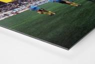 BVB dankt Fans als auf Alu-Dibond kaschierter Fotoabzug (Detail)