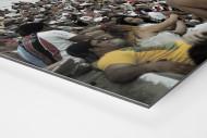 Im Estádio do Arruda als auf Alu-Dibond kaschierter Fotoabzug (Detail)
