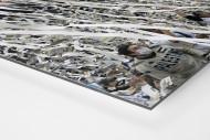 Vélez-Fankurve als auf Alu-Dibond kaschierter Fotoabzug (Detail)