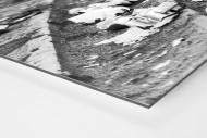 Dosenbier im Hampden Park als auf Alu-Dibond kaschierter Fotoabzug (Detail)