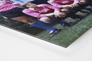 HSV in Rosa als auf Alu-Dibond kaschierter Fotoabzug (Detail)