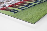 HSV im Pokalfinale als auf Alu-Dibond kaschierter Fotoabzug (Detail)
