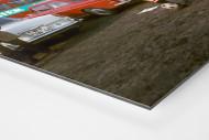 Strehl auf dem Parkplatz als auf Alu-Dibond kaschierter Fotoabzug (Detail)