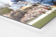 Toni mit Mütze als auf Alu-Dibond kaschierter Fotoabzug (Detail)
