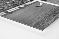 Unter die Latte als auf Alu-Dibond kaschierter Fotoabzug (Detail)