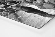 Schaulustige bei Paris-Roubaix als auf Alu-Dibond kaschierter Fotoabzug (Detail)