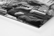 Mailand-Sanremo 1955 als auf Alu-Dibond kaschierter Fotoabzug (Detail)