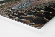 Braunschweig (2013) als auf Alu-Dibond kaschierter Fotoabzug (Detail)