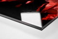 Ponte Preta Fans With Pyro als Direktdruck auf Alu-Dibond hinter Acrylglas (Detail)
