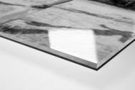 Ballartist als Direktdruck auf Alu-Dibond hinter Acrylglas (Detail)