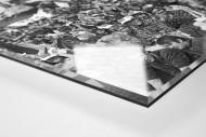 Halle Fans 1977 als Direktdruck auf Alu-Dibond hinter Acrylglas (Detail)