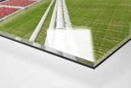 Nationalstadion Warschau von oben als Direktdruck auf Alu-Dibond hinter Acrylglas (Detail)