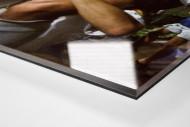 Klinsi trägt Rudi als Direktdruck auf Alu-Dibond hinter Acrylglas (Detail)