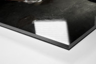 Ponte Preta Fan Praying And Crying als Direktdruck auf Alu-Dibond hinter Acrylglas (Detail)
