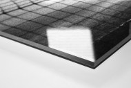 Torwart im Nebel als Direktdruck auf Alu-Dibond hinter Acrylglas (Detail)