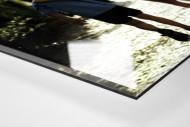 5 Freunde als Direktdruck auf Alu-Dibond hinter Acrylglas (Detail)