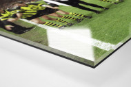 BVB im Old Trafford als Direktdruck auf Alu-Dibond hinter Acrylglas (Detail)
