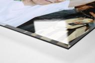Kiwi und der Pokal als Direktdruck auf Alu-Dibond hinter Acrylglas (Detail)