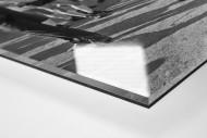 Kölner Meister 1964 als Direktdruck auf Alu-Dibond hinter Acrylglas (Detail)