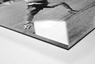 Jay-Jay vs. Titan als Direktdruck auf Alu-Dibond hinter Acrylglas (Detail)