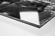 Zuschauer auf dem Dach als Direktdruck auf Alu-Dibond hinter Acrylglas (Detail)