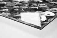 Zuschauer 1963 als Direktdruck auf Alu-Dibond hinter Acrylglas (Detail)