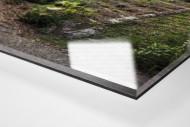 Verlassene Stadien - Essen (2) als Direktdruck auf Alu-Dibond hinter Acrylglas (Detail)