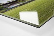 Verlassene Stadien - Solingen (1) als Direktdruck auf Alu-Dibond hinter Acrylglas (Detail)