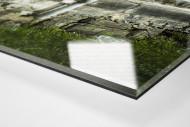 Stehplätze Bölle  als Direktdruck auf Alu-Dibond hinter Acrylglas (Detail)