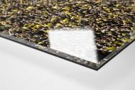 Gelbe Wand - Farbe (2) als Direktdruck auf Alu-Dibond hinter Acrylglas (Detail)