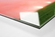 Materazzi, Rui Costa und der Rauch als Direktdruck auf Alu-Dibond hinter Acrylglas (Detail)