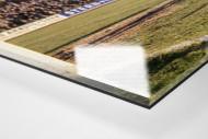 Aachen im Uhlenkrug als Direktdruck auf Alu-Dibond hinter Acrylglas (Detail)