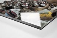 Im Estádio do Arruda als Direktdruck auf Alu-Dibond hinter Acrylglas (Detail)