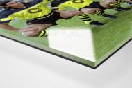 BVB im Olympiastadion als Direktdruck auf Alu-Dibond hinter Acrylglas (Detail)