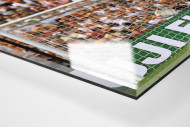 Bonner vor holländischen Fans als Direktdruck auf Alu-Dibond hinter Acrylglas (Detail)