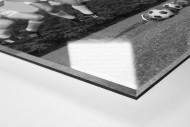 Köln 1964 als Direktdruck auf Alu-Dibond hinter Acrylglas (Detail)